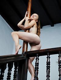 Sofi Shane nude in..